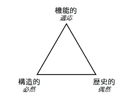 evo_triad.jpg